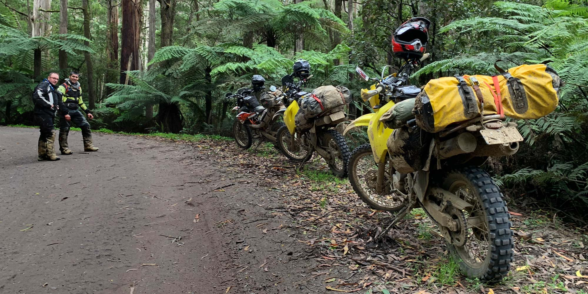 Great Otway Outing Adventure Motorbike Tour